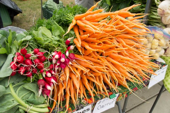 Crispy, crunchy carrots, radishes & Yukon Gold potatoes from Fresh International Gardens.