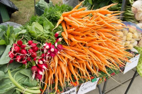 Crispy, crunchy carrots, radishes & Yukon Gold potatoes from Fresh International Gardens.