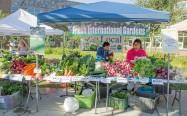 Fresh International Gardens produce grown in Mountain View.