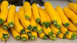 Yellow (& green) Zucchini from Dinkel's Veggies.